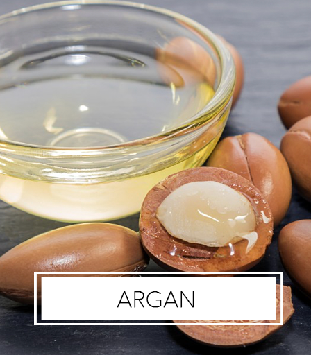 Africa's Best Ingredients - Argan