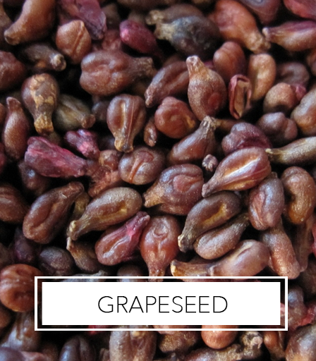 Africa's Best Ingredients - Grapeseed