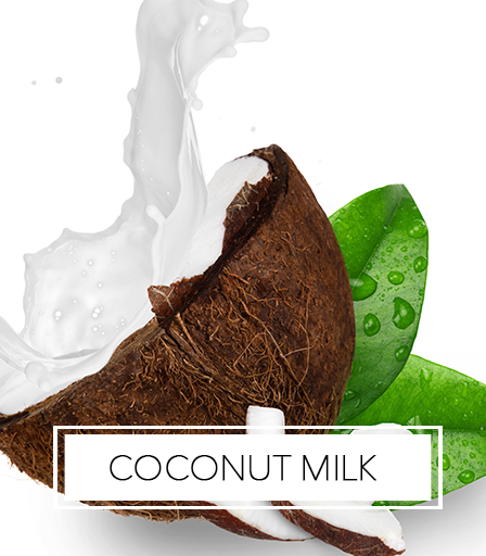 Africa's Best Ingredients - Coconut Milk