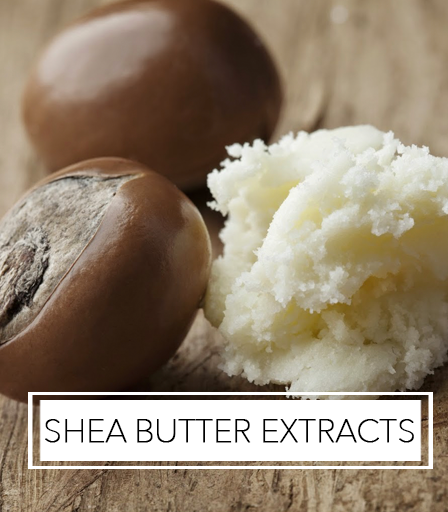 Shea Butter Extracts